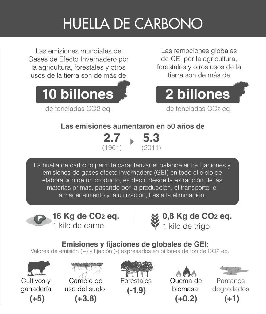 Infografía Huella De Vida