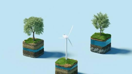 ¿Qué es la educación ambiental? Objetivos y programas.